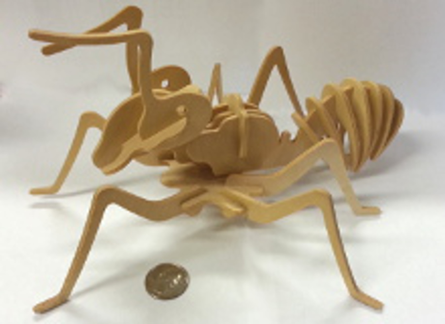 3D Wooden Worker Ant Puzzle